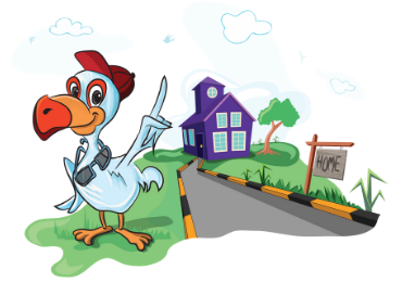 Home Insurance by Insurance Dodo