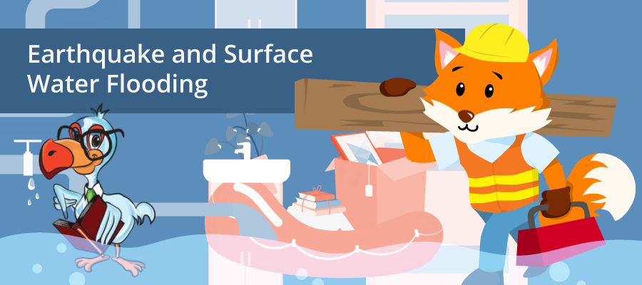 earthquake insurance and Surface Water Flooding